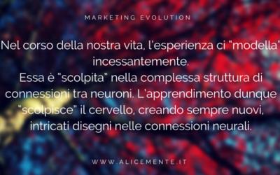 Marketing Plastico