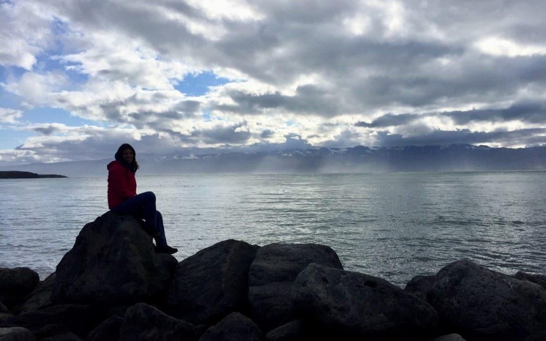 Islanda 2018: 3500 km around Iceland